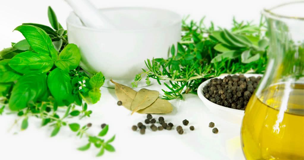 Какие травы помогают при лечении молочницы?